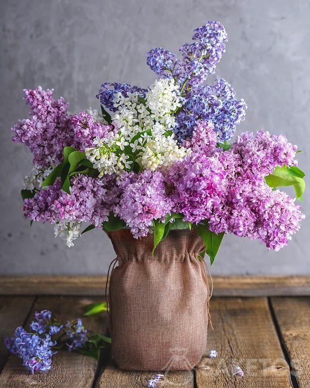 5.Jutebeutel als Vasenhülle mit Holunderblumen