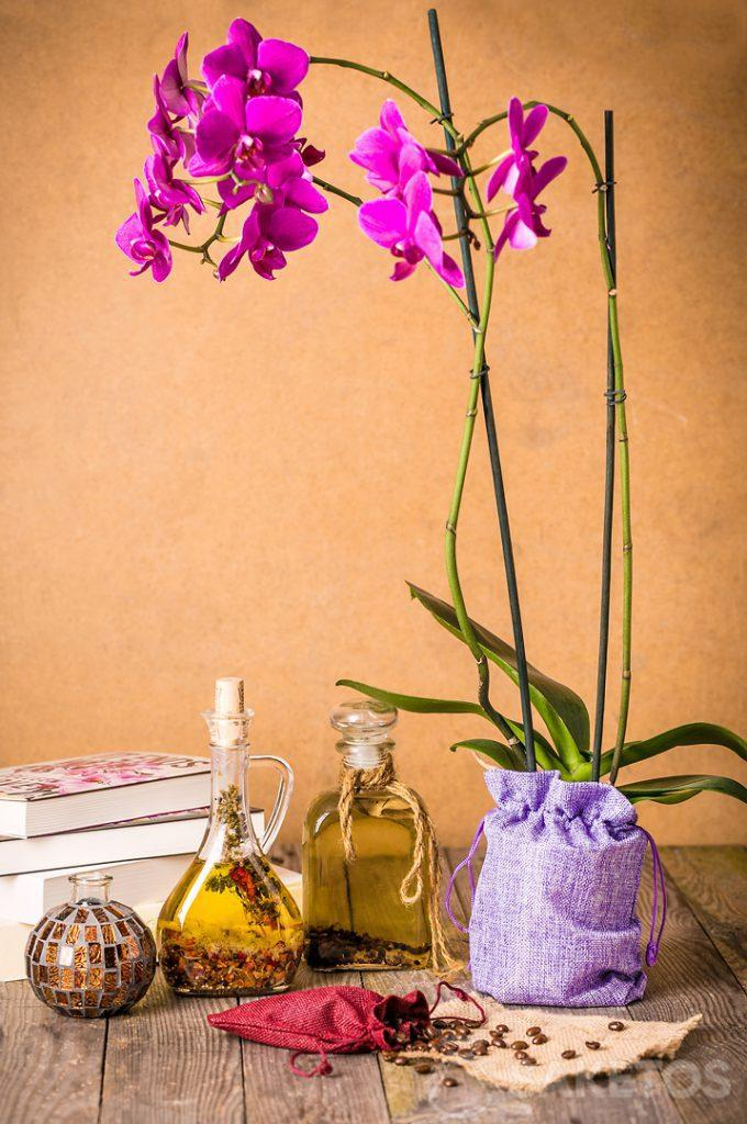 2.Orchidee verpackt in einen dekorativen Jutebeutel